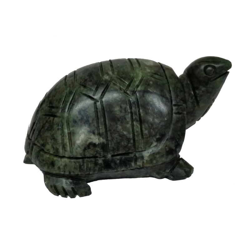 Chinese Jade Turtle